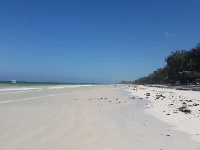 Diani Beach Bungalows